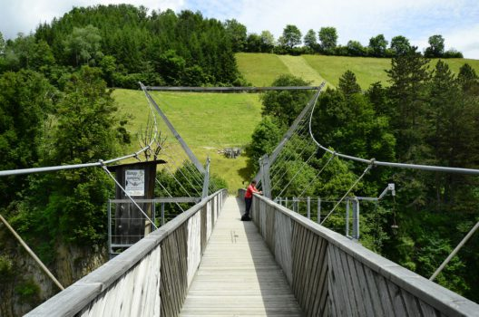 Benni-Raich-Brücke in Arzl (Bild: fritz16 – shutterstokc.com)