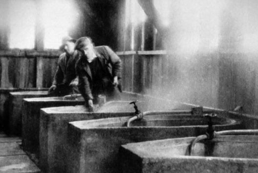 Zehn Jahre nach Entdeckung des legendären Heilwassers begann in Bad Füssing der Badebetrieb - in improvisierten, aus Kanalrohren gebastelten Wannen.