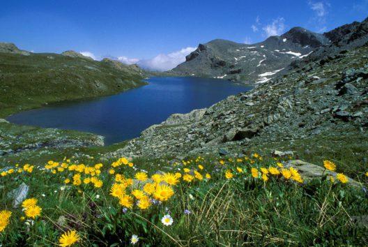 Mont Avic (Bild: Aree protette, Maurizio Broglio)