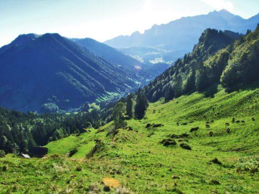 Gemeinsam mit Freunden die schöne Schweiz entdecken (Bild: Mario Krpan - shutterstock.com)