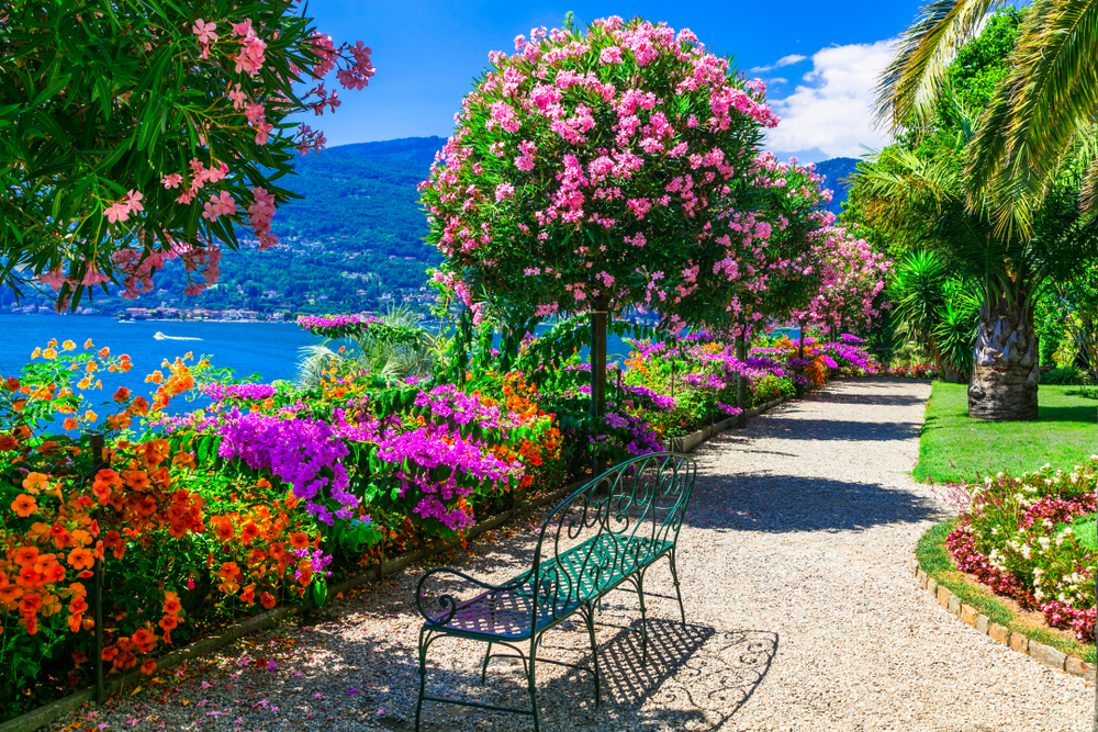 Frühling am Lago Maggiore geniessen (Bild: leoks - shutterstock.com)