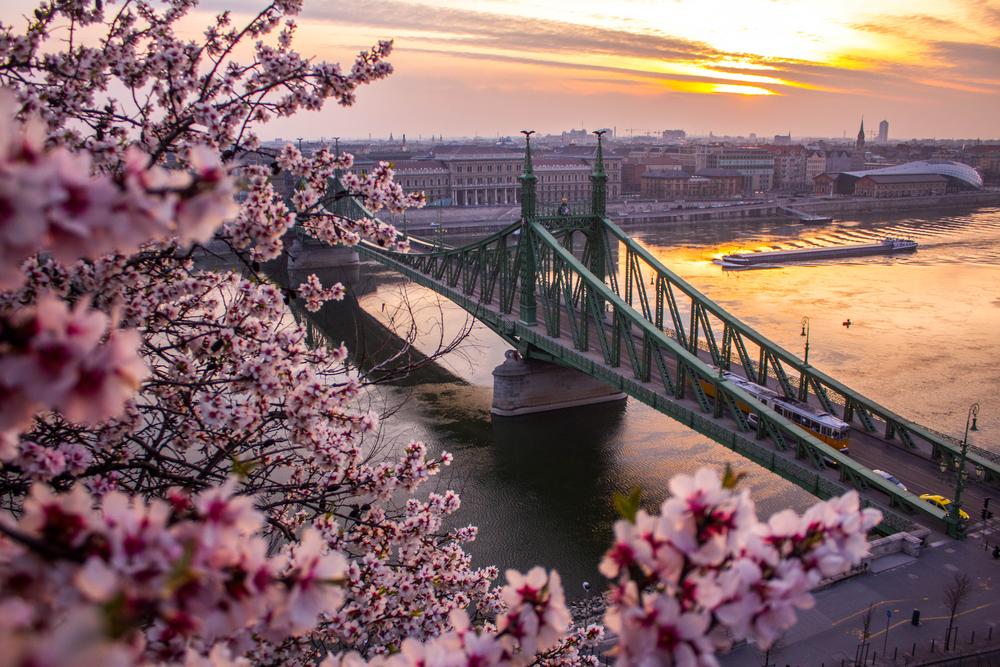 Frühlingsaussicht auf die Kettenbrücke. (Bild: Mark Mervai - shutterstock)